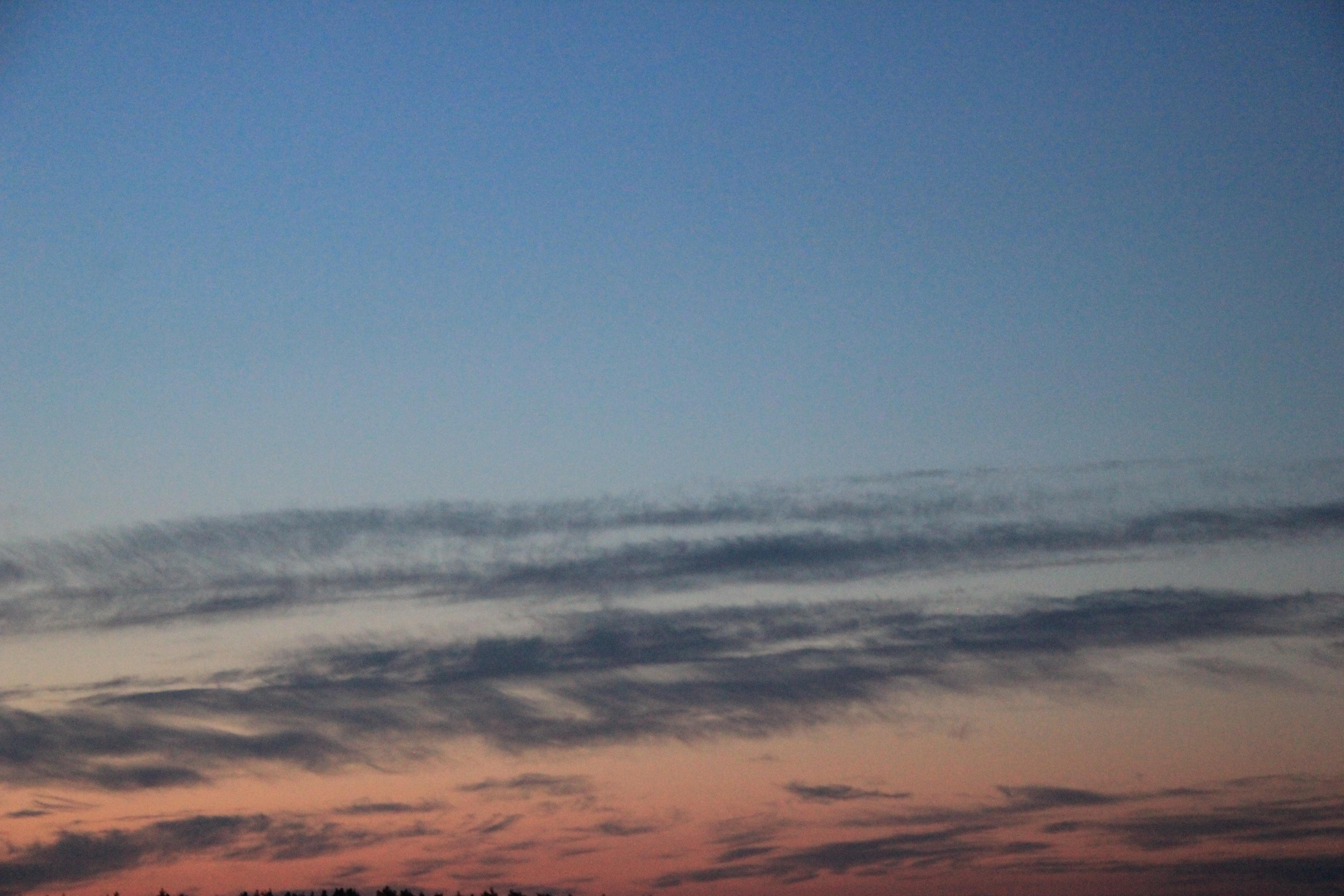 розовое небо заката (6)
