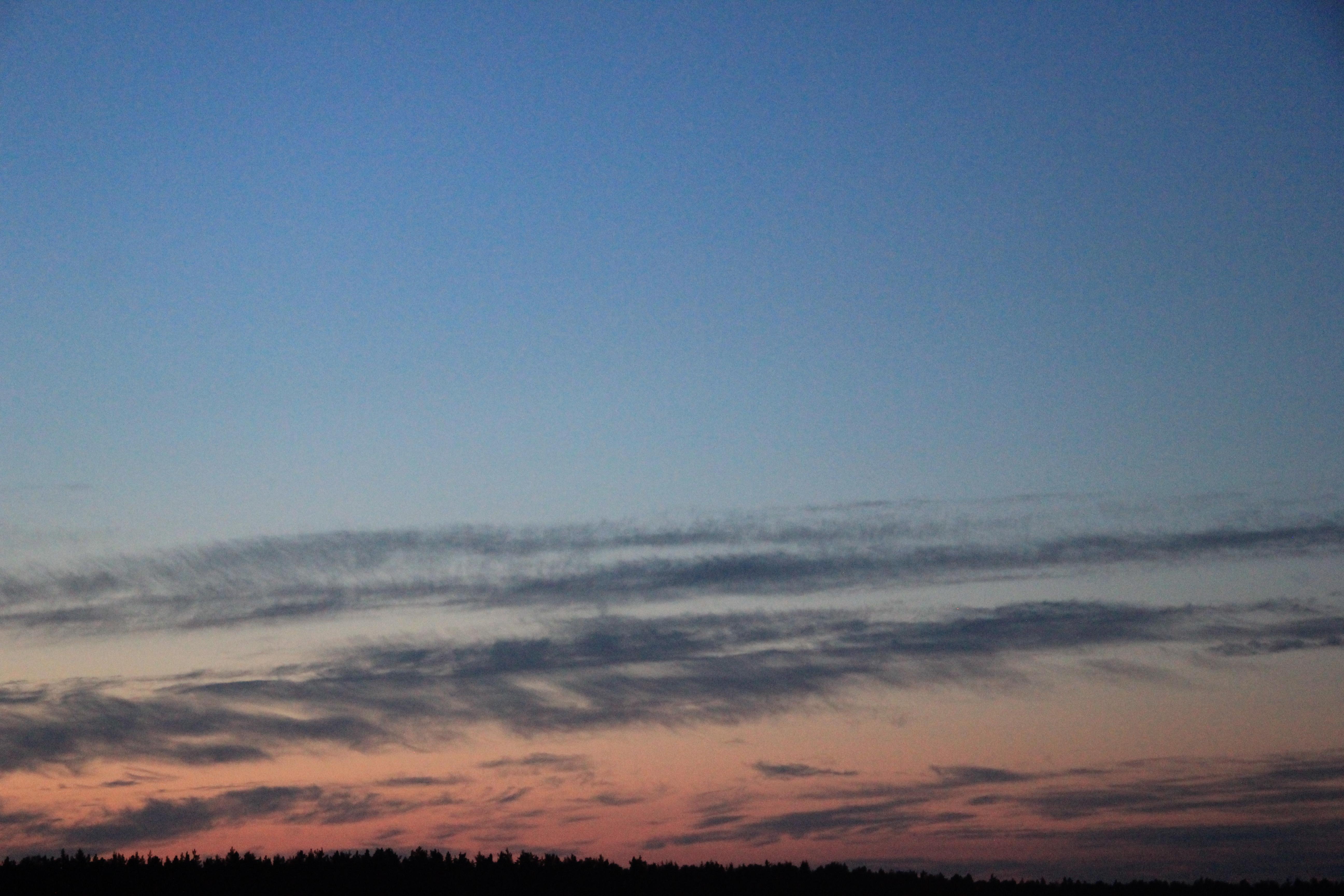 розовое небо заката (7)