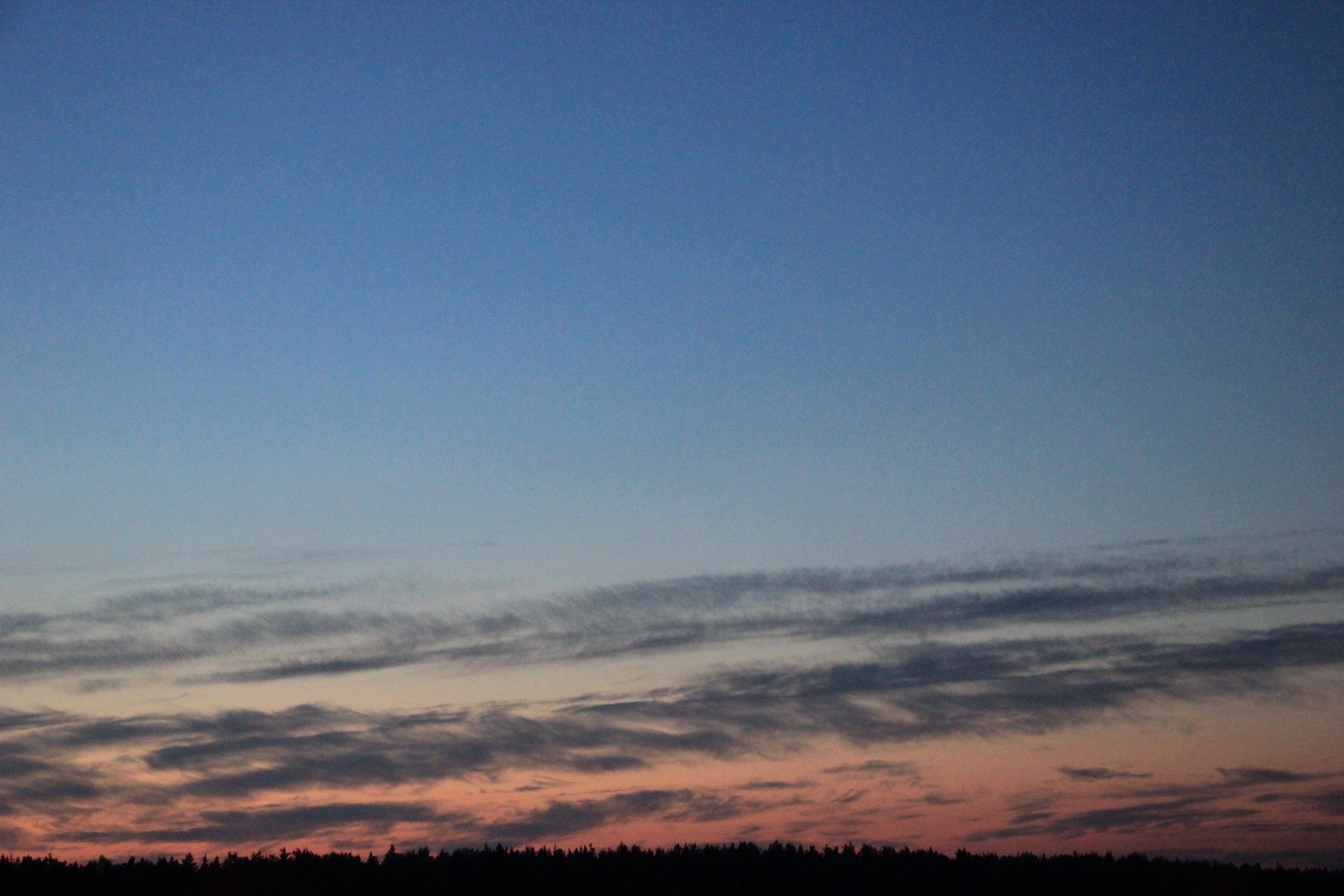розовое небо заката (8)