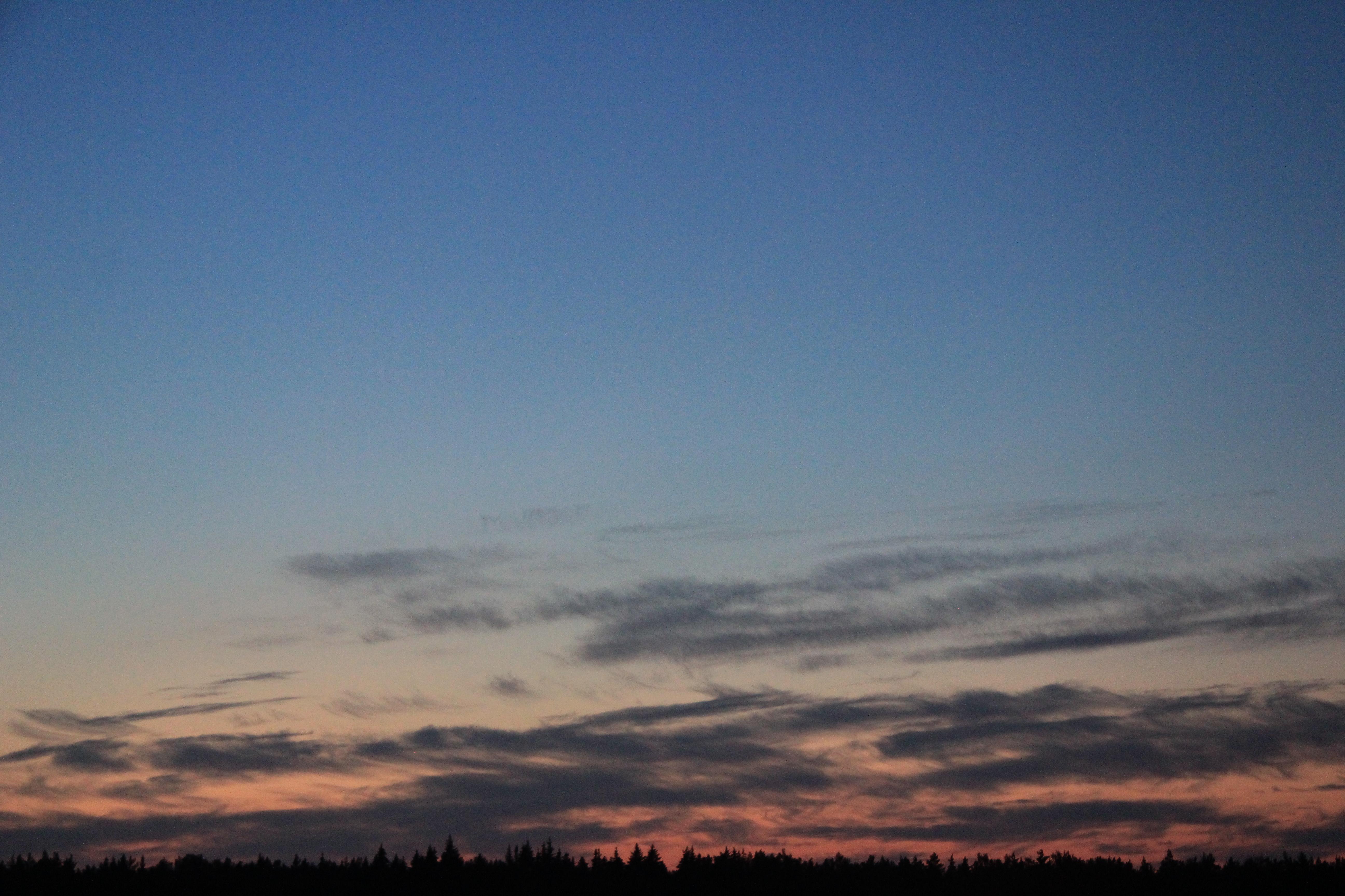 розовое небо заката (9)