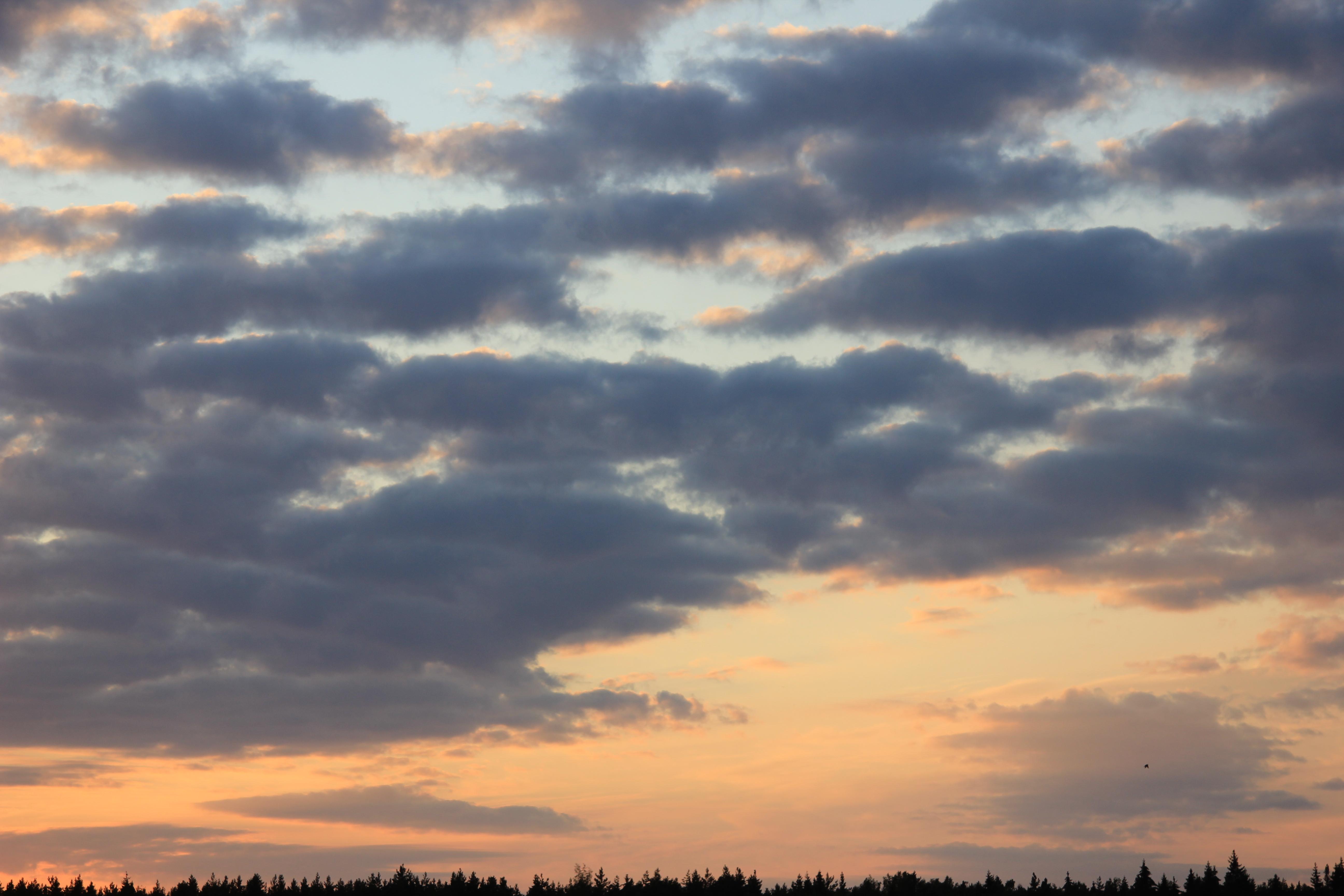 уходящее солнце в закат (1)