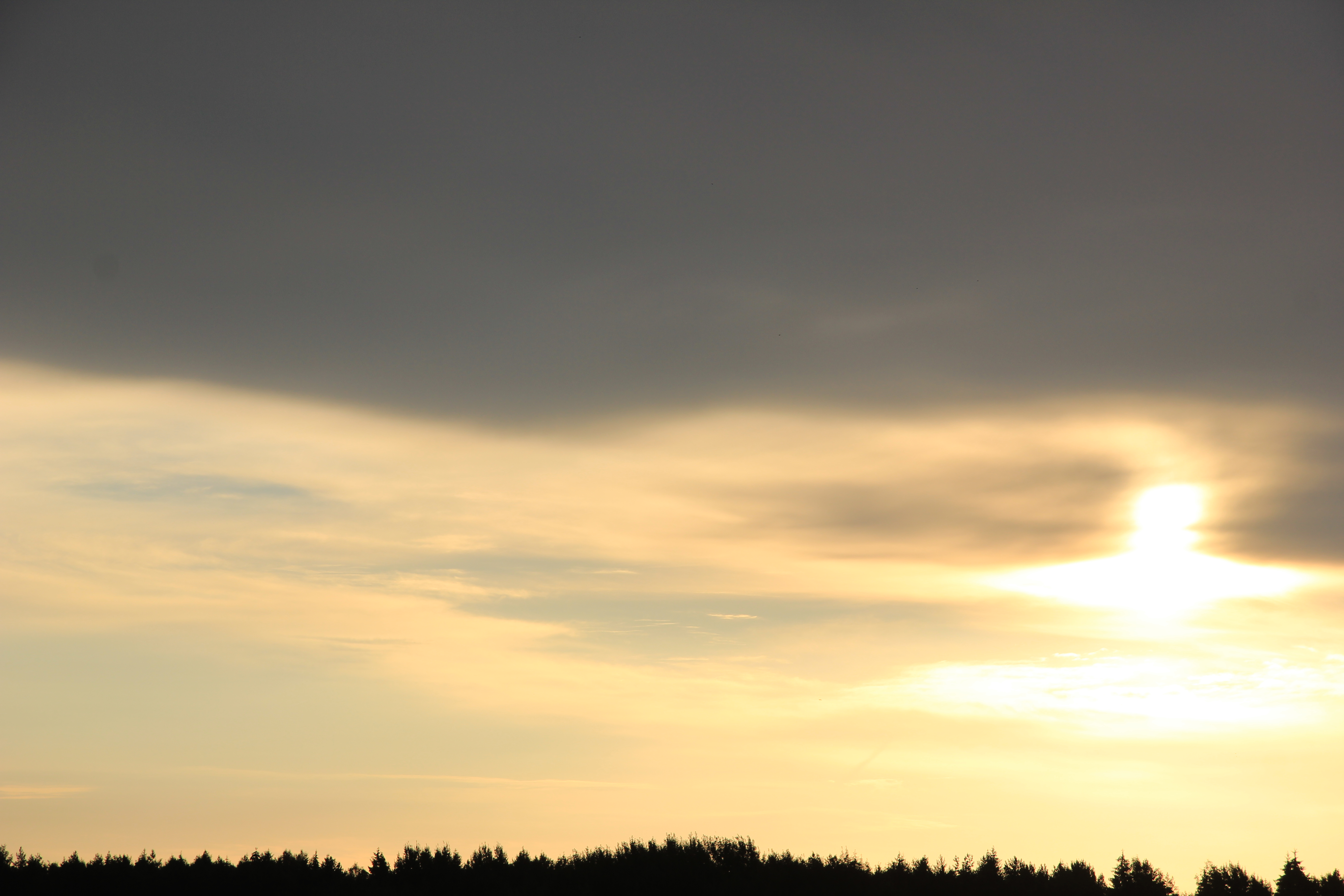 Яркое утреннее небо (100)