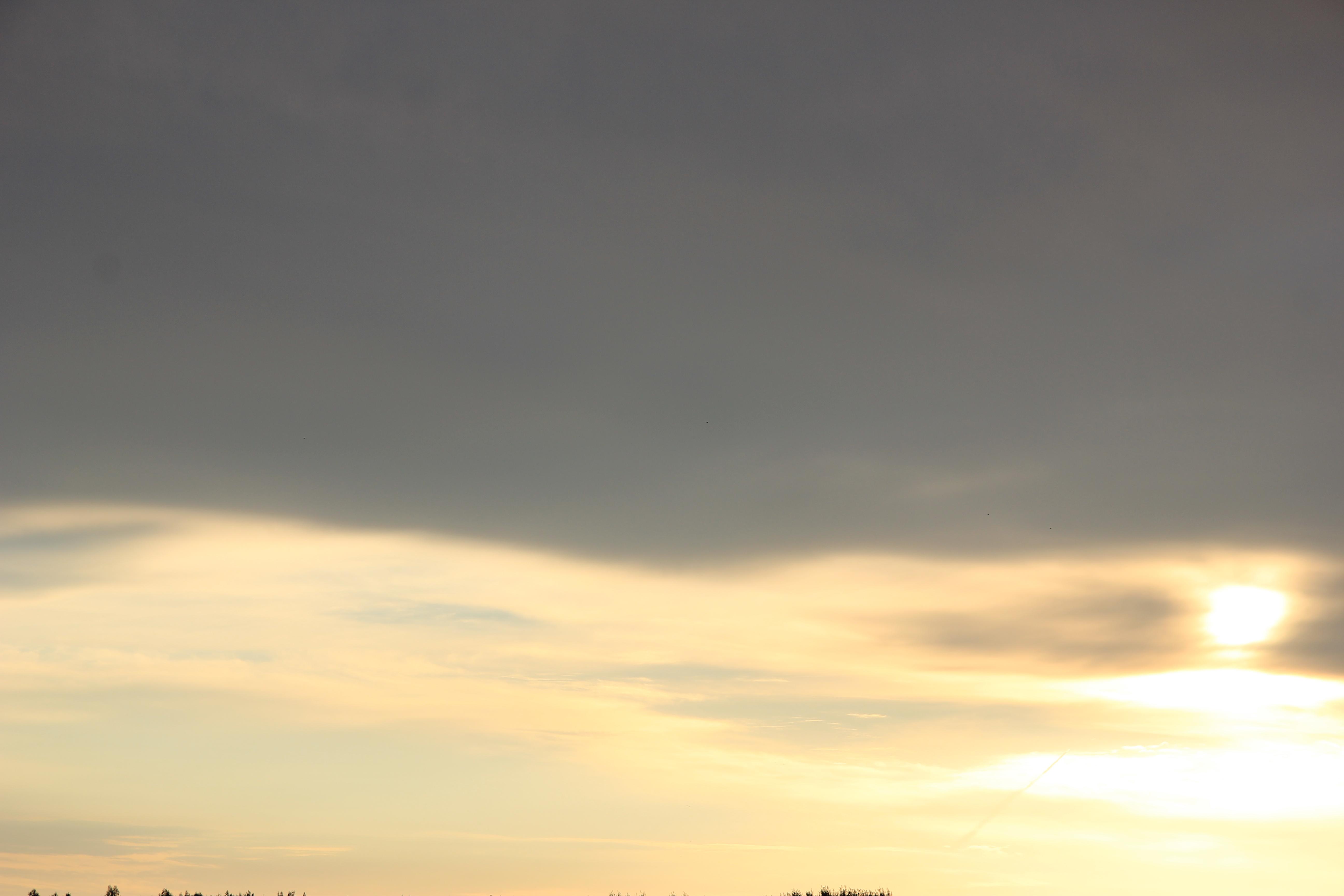 Яркое утреннее небо (109)