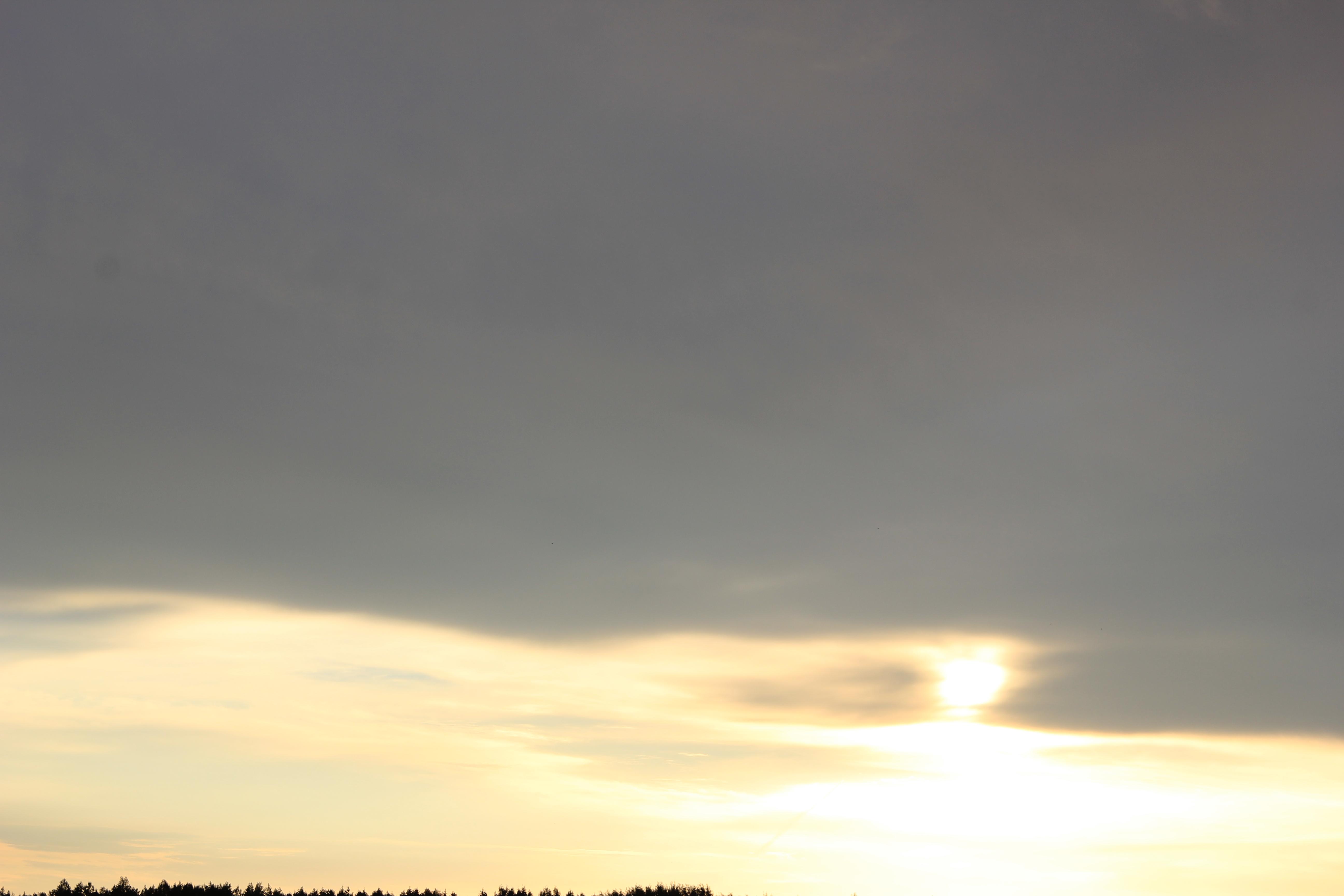 Яркое утреннее небо (110)