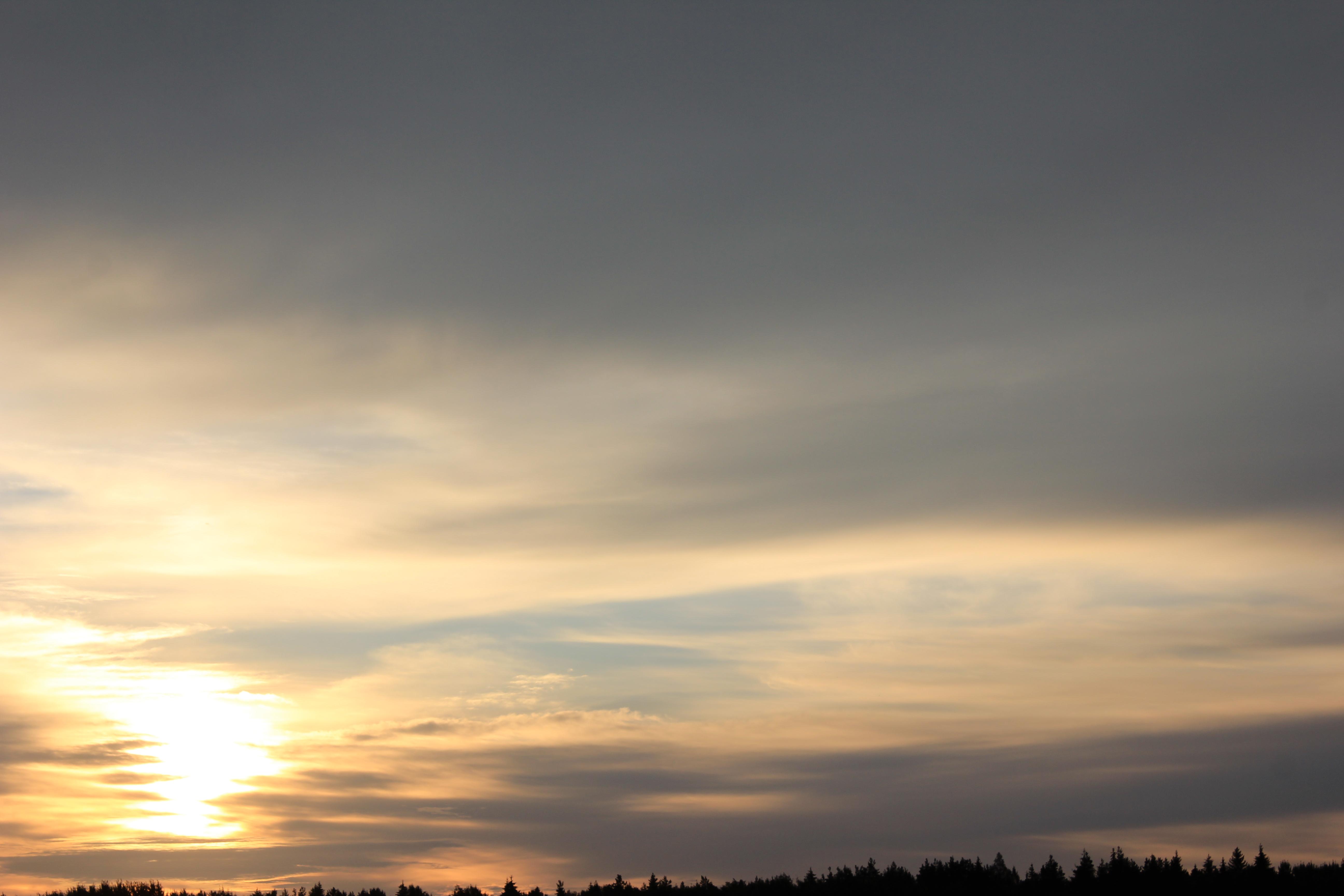 Яркое утреннее небо (36)