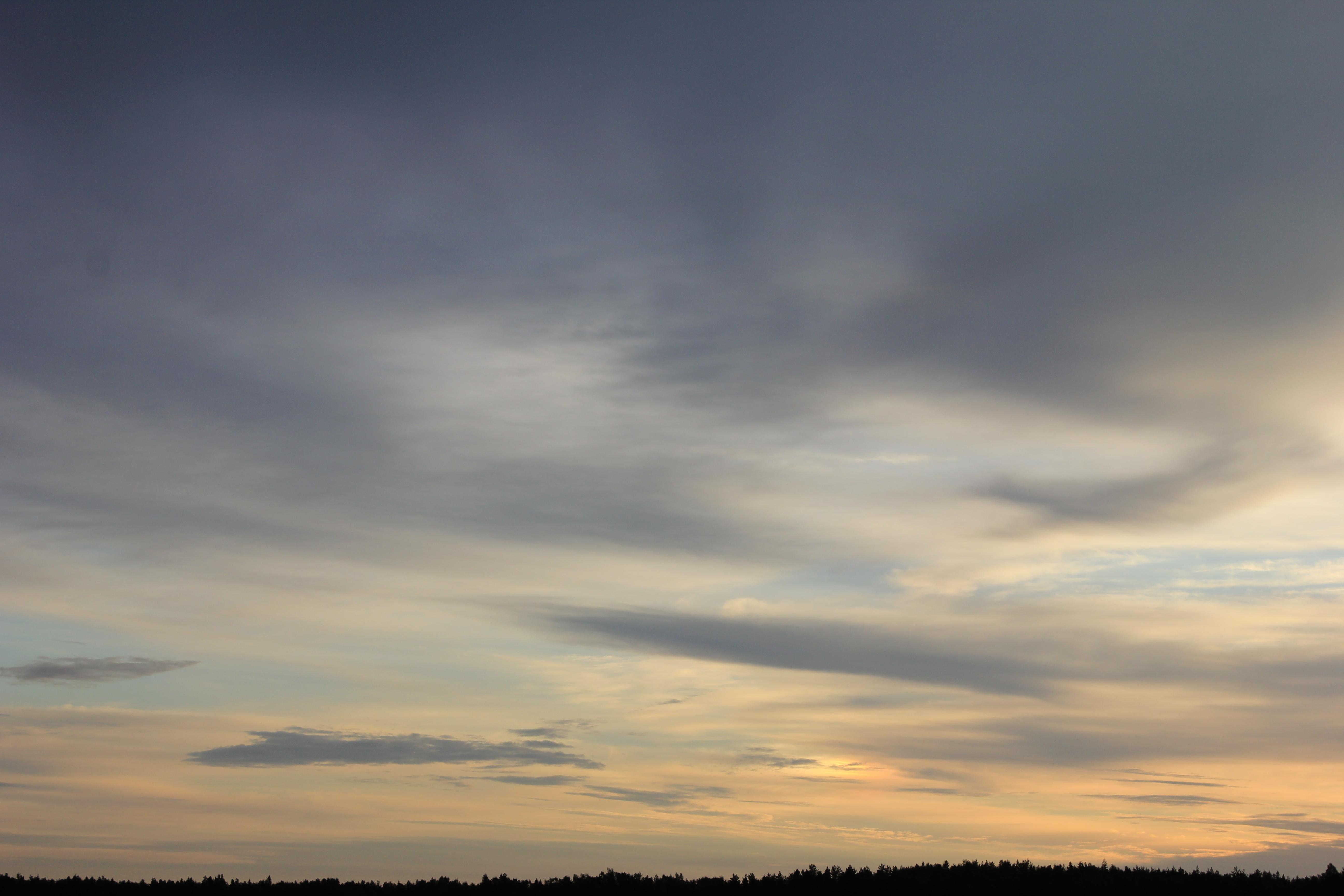 Яркое утреннее небо (38)