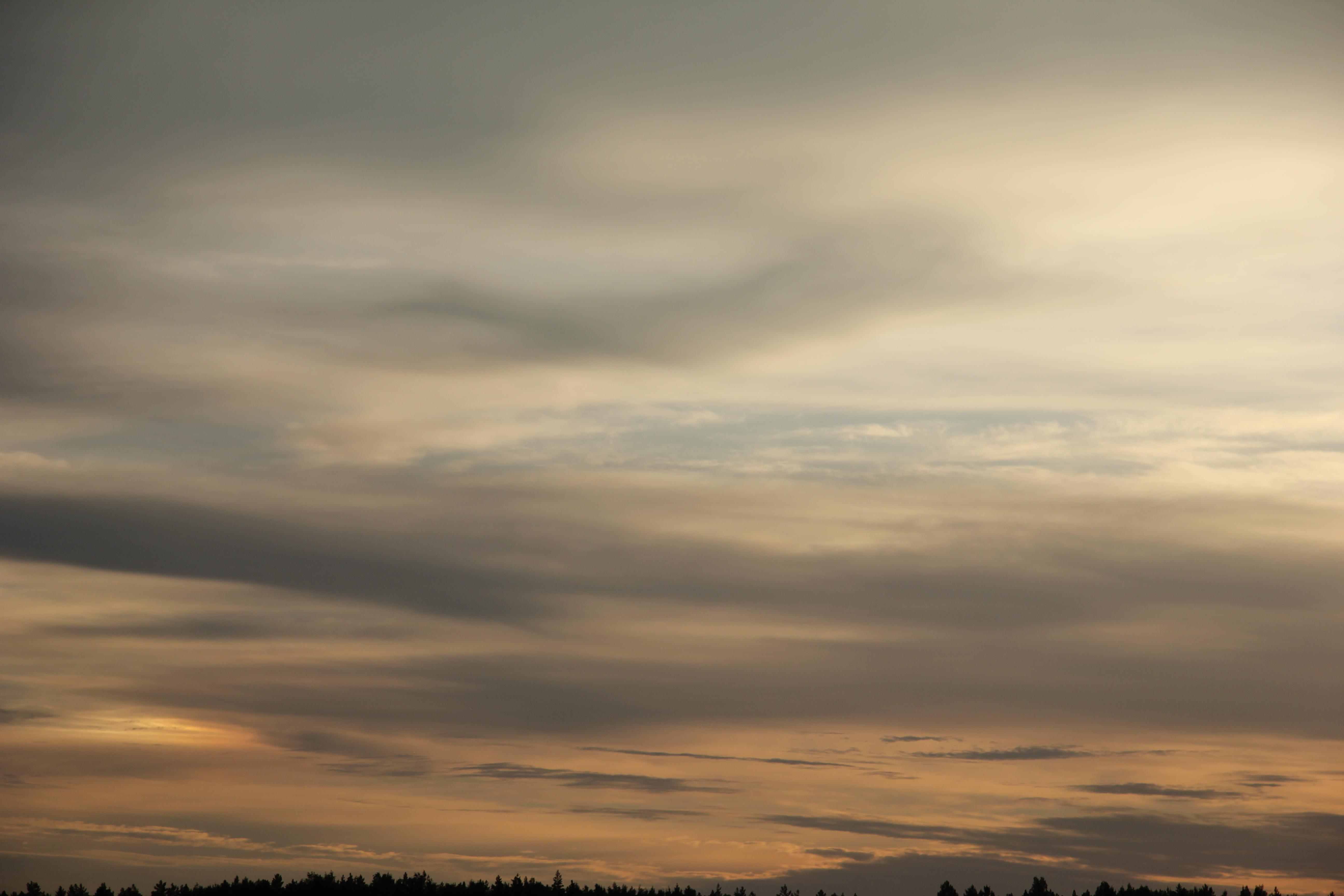 Яркое утреннее небо (54)