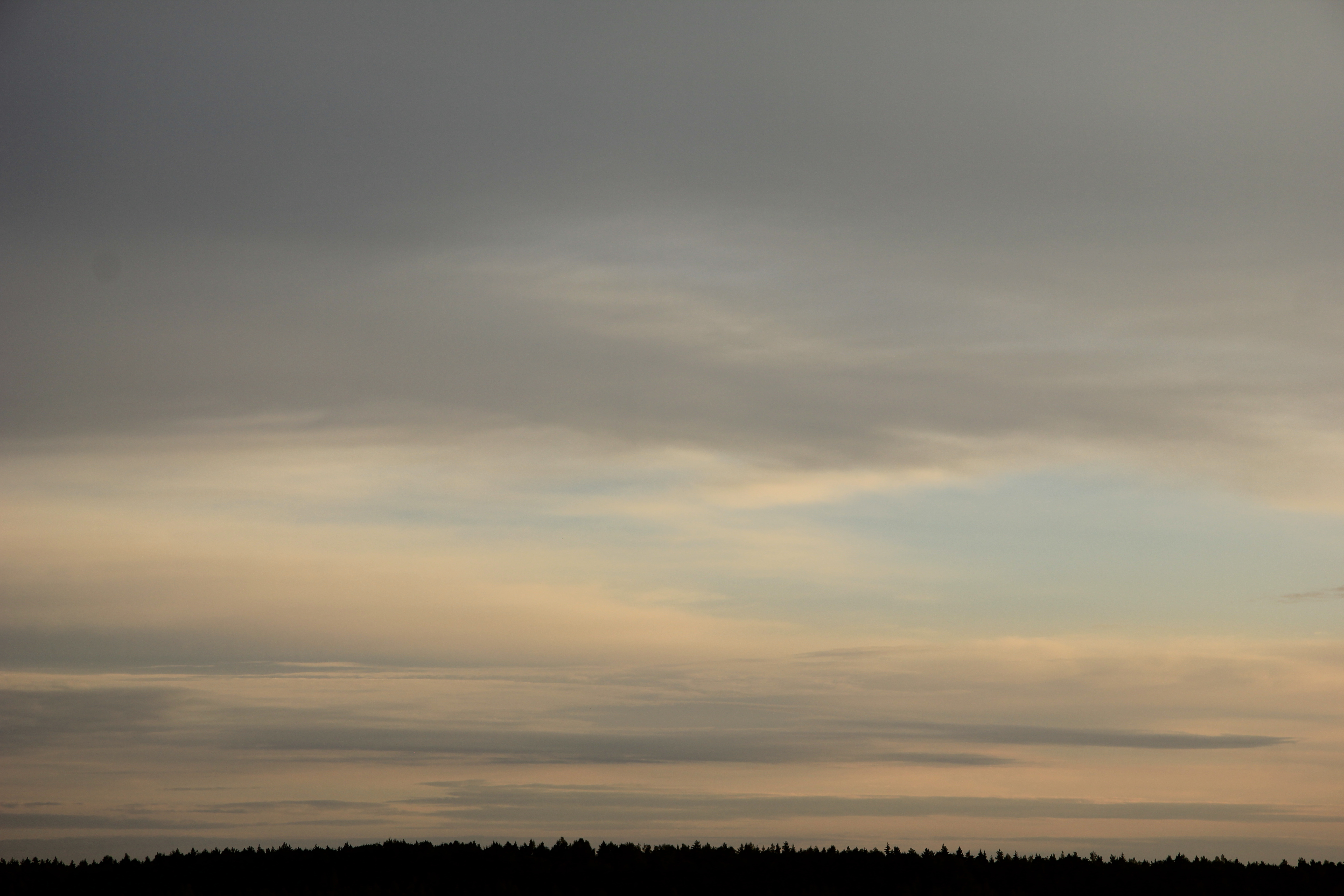 Яркое утреннее небо (59)
