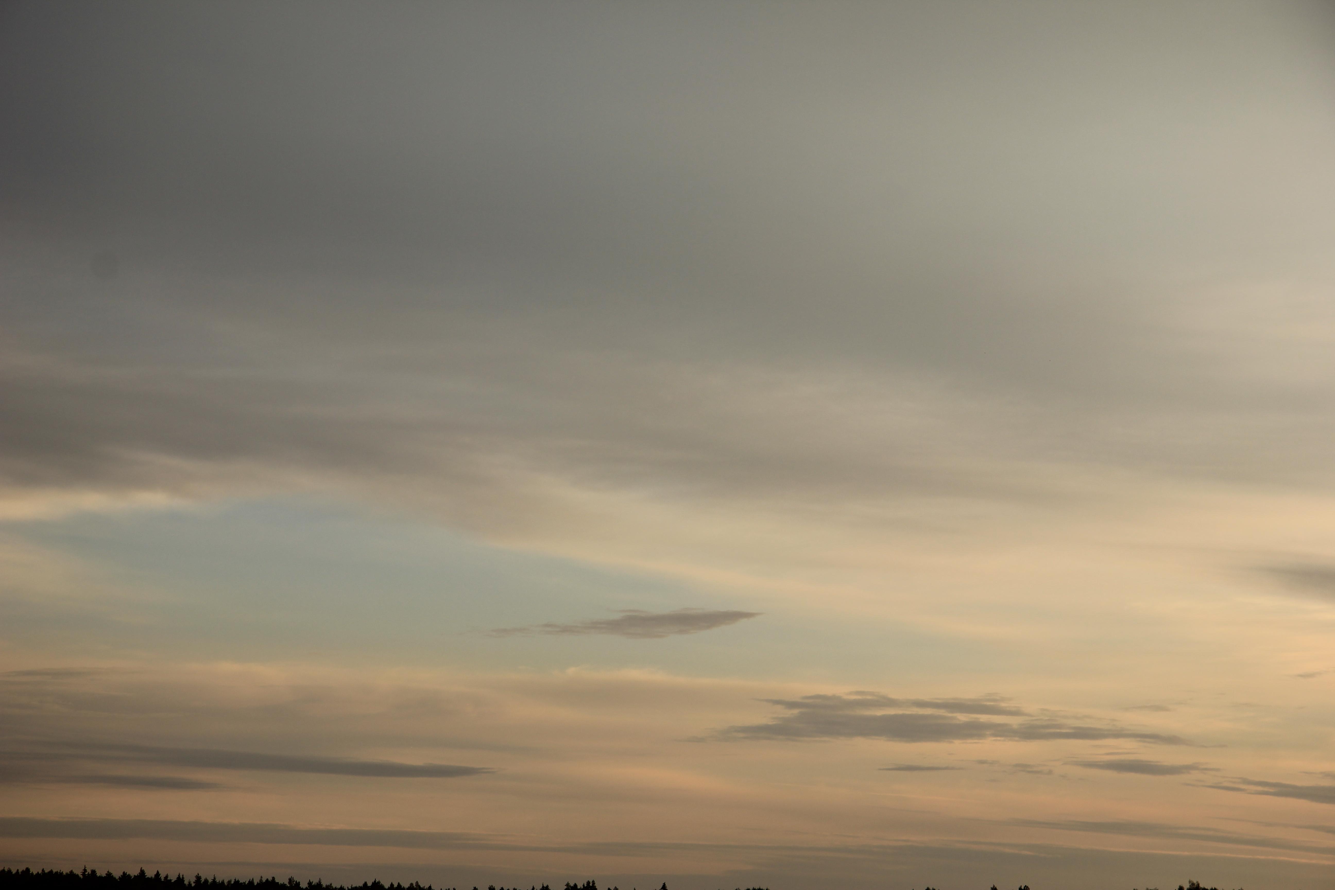 Яркое утреннее небо (60)