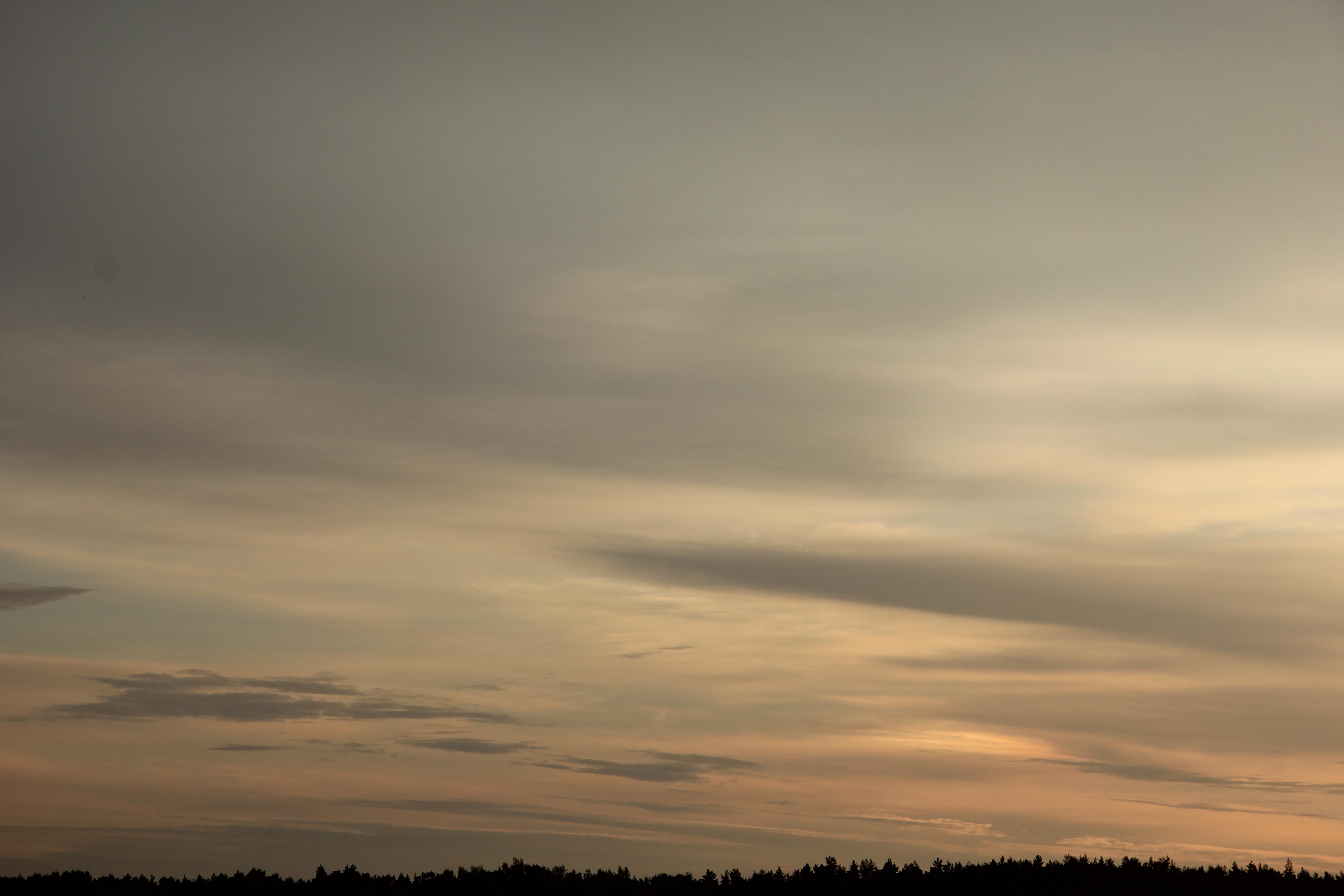 Яркое утреннее небо (61)