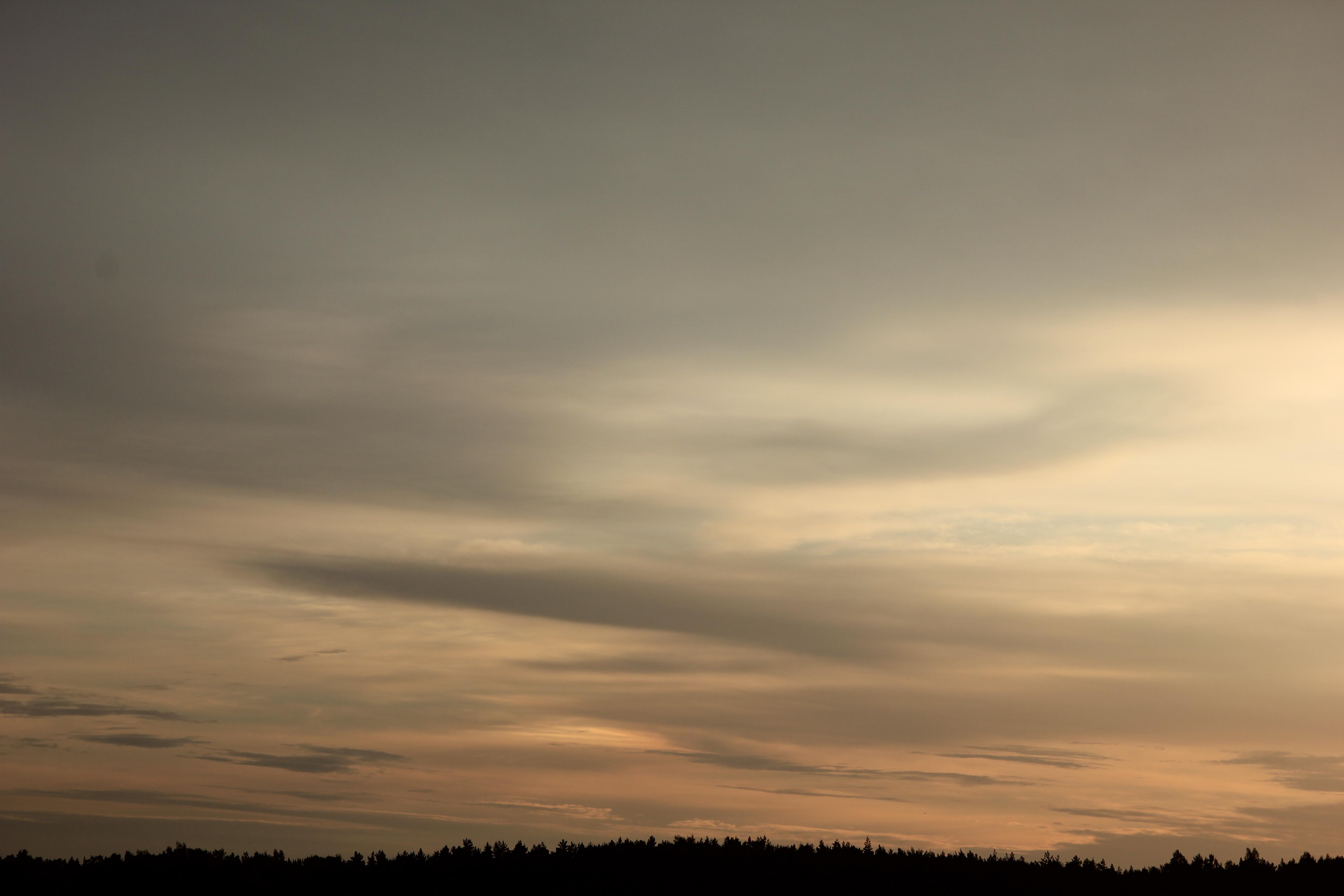 Яркое утреннее небо (62)