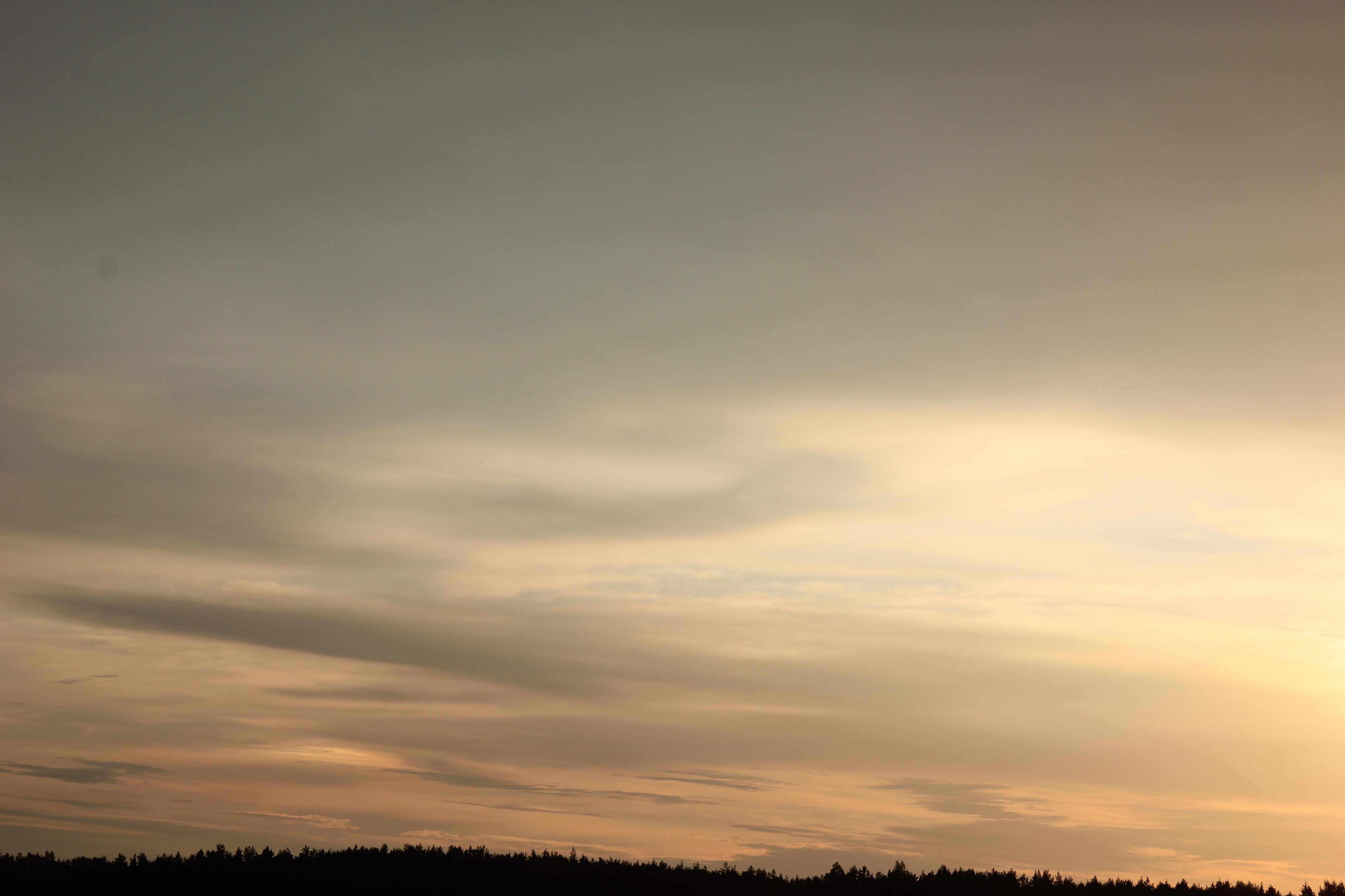 Яркое утреннее небо (63)