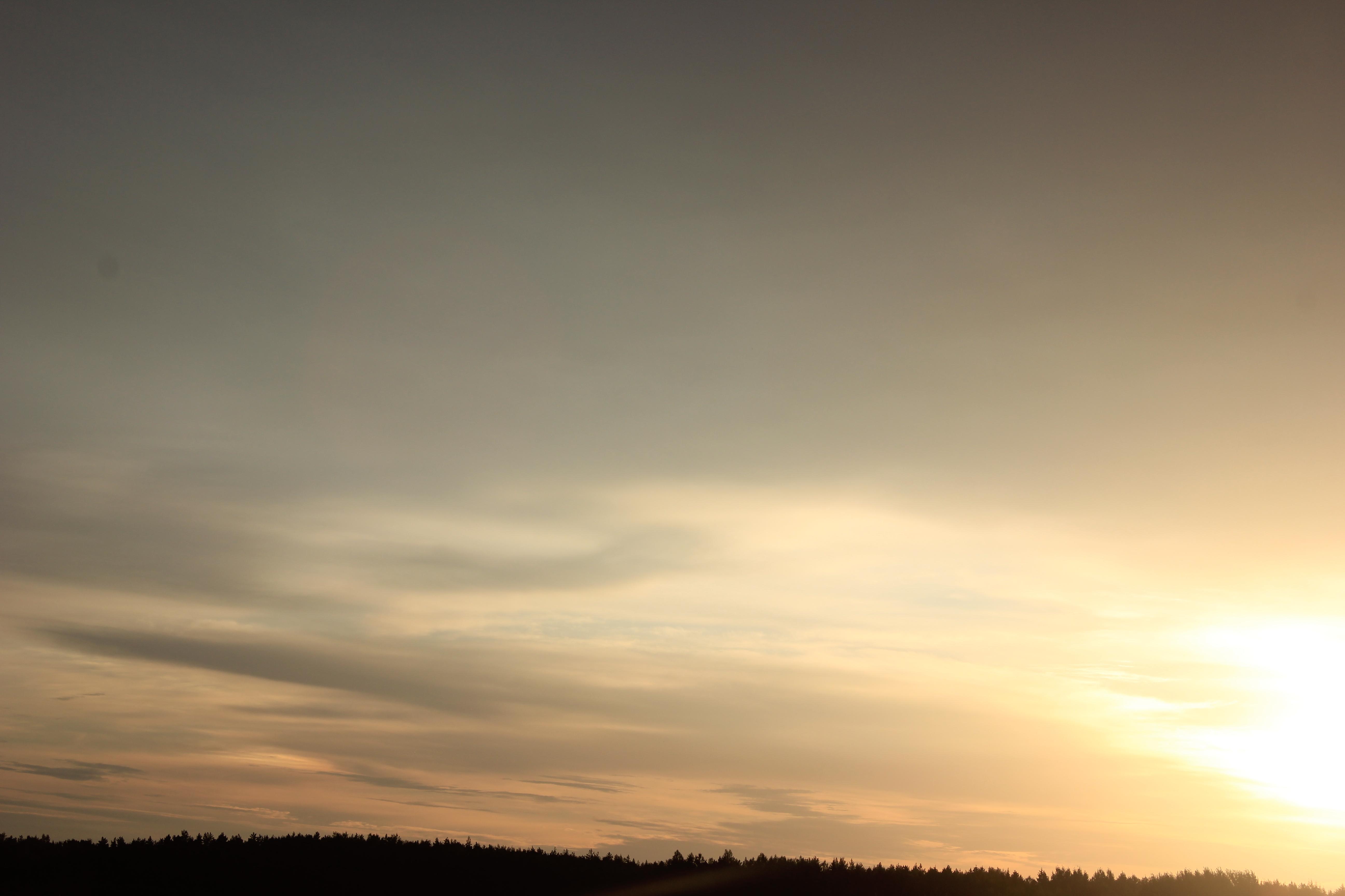 Яркое утреннее небо (64)