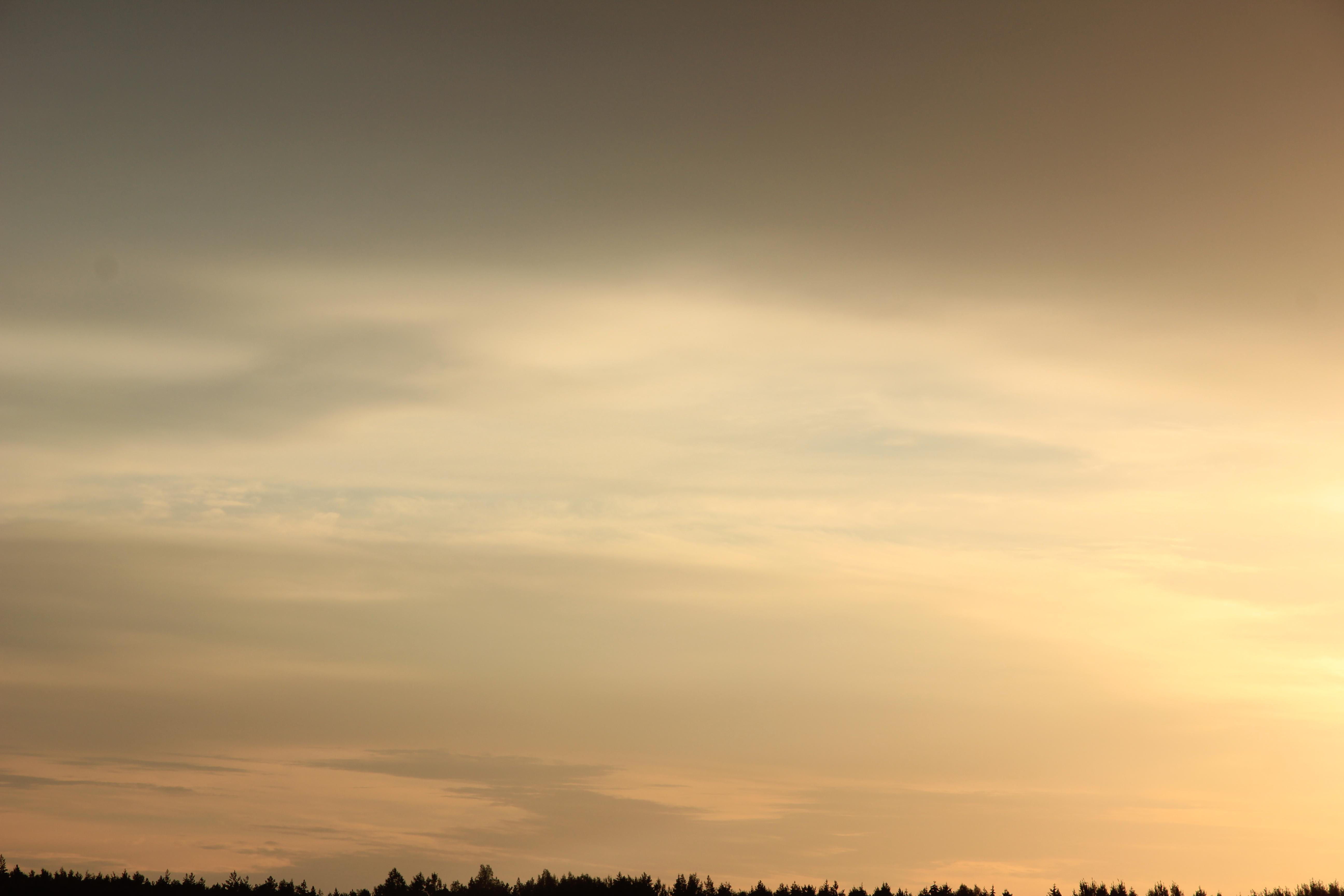 Яркое утреннее небо (68)