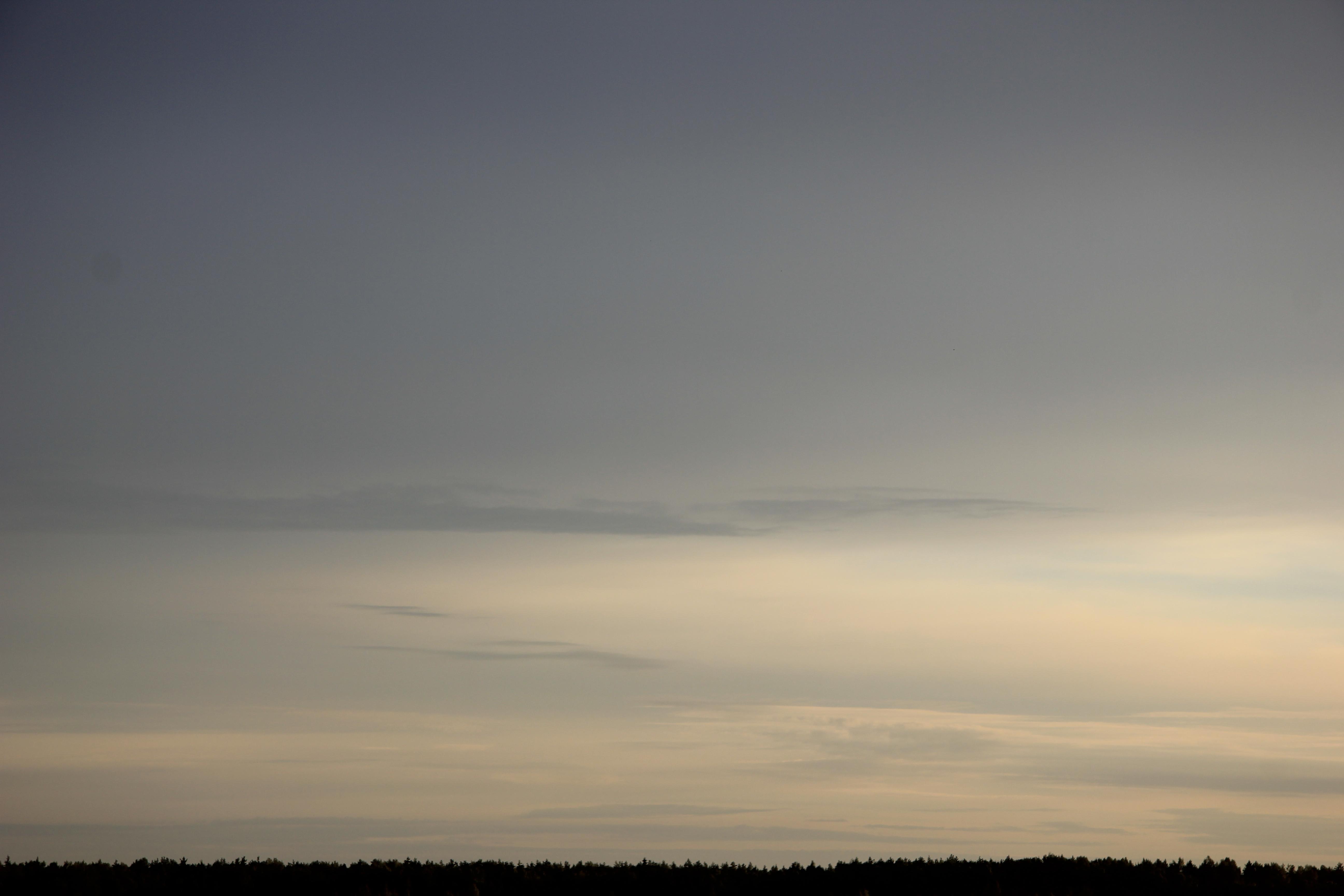 Яркое утреннее небо (80)