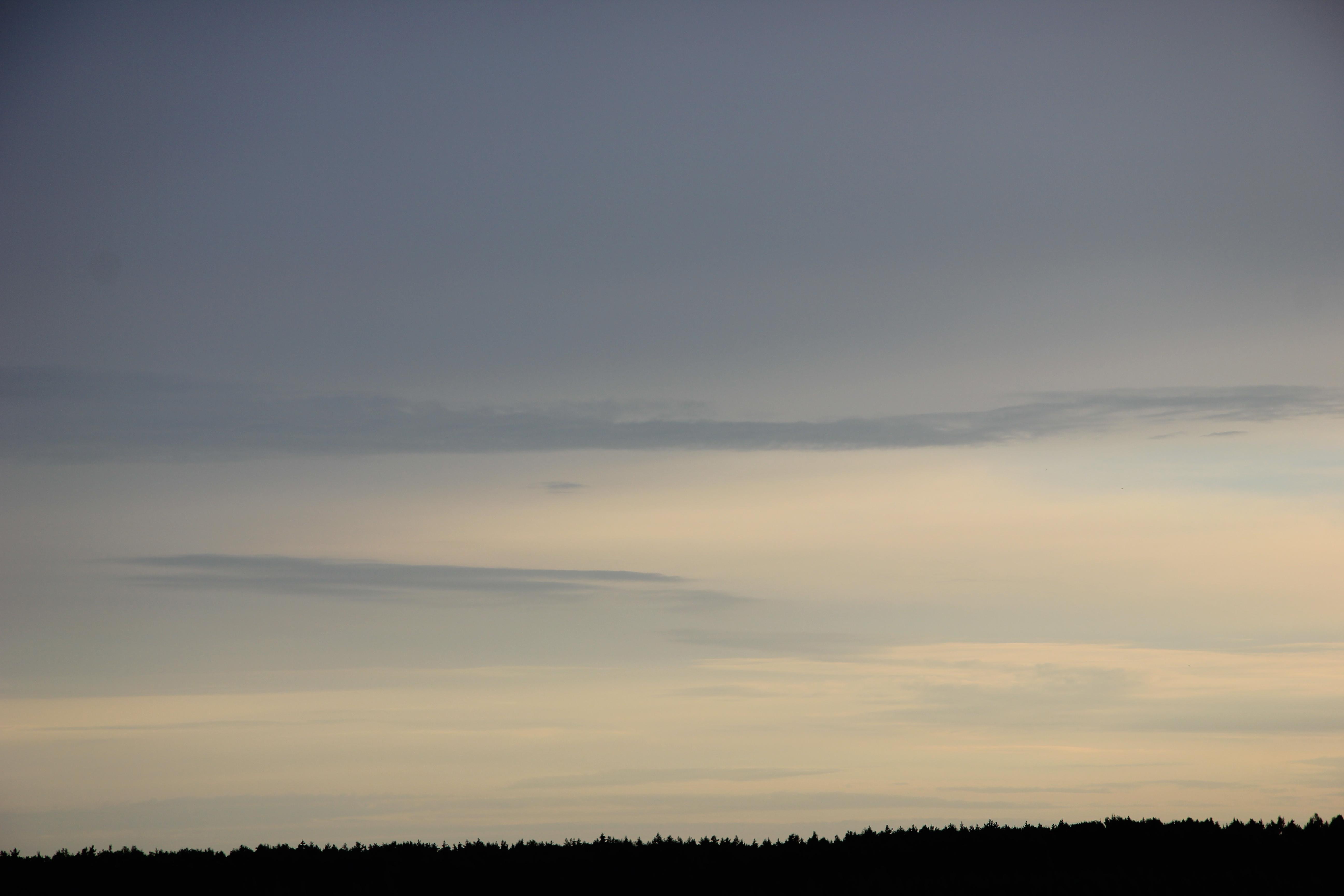 Яркое утреннее небо (87)