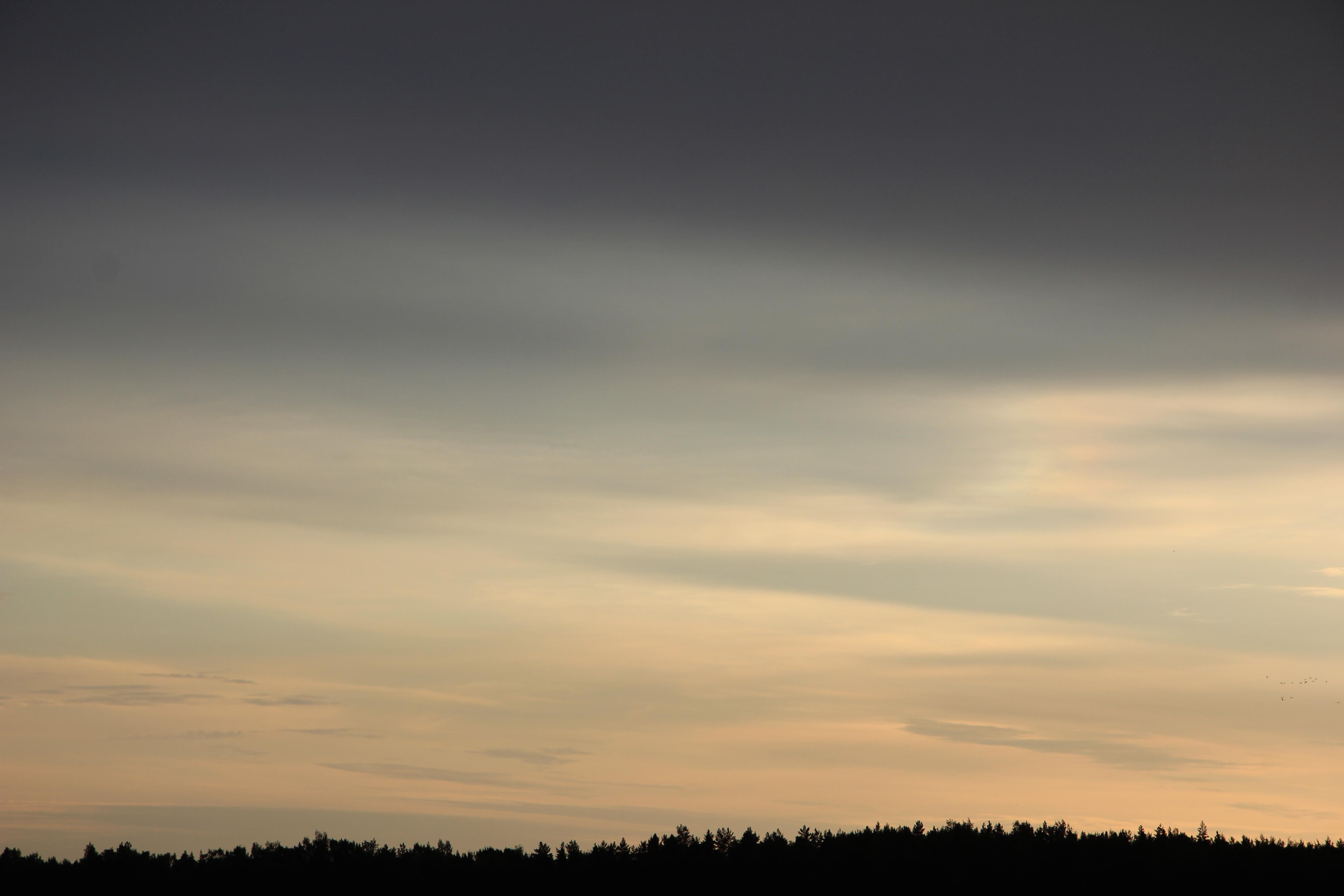 Яркое утреннее небо (91)