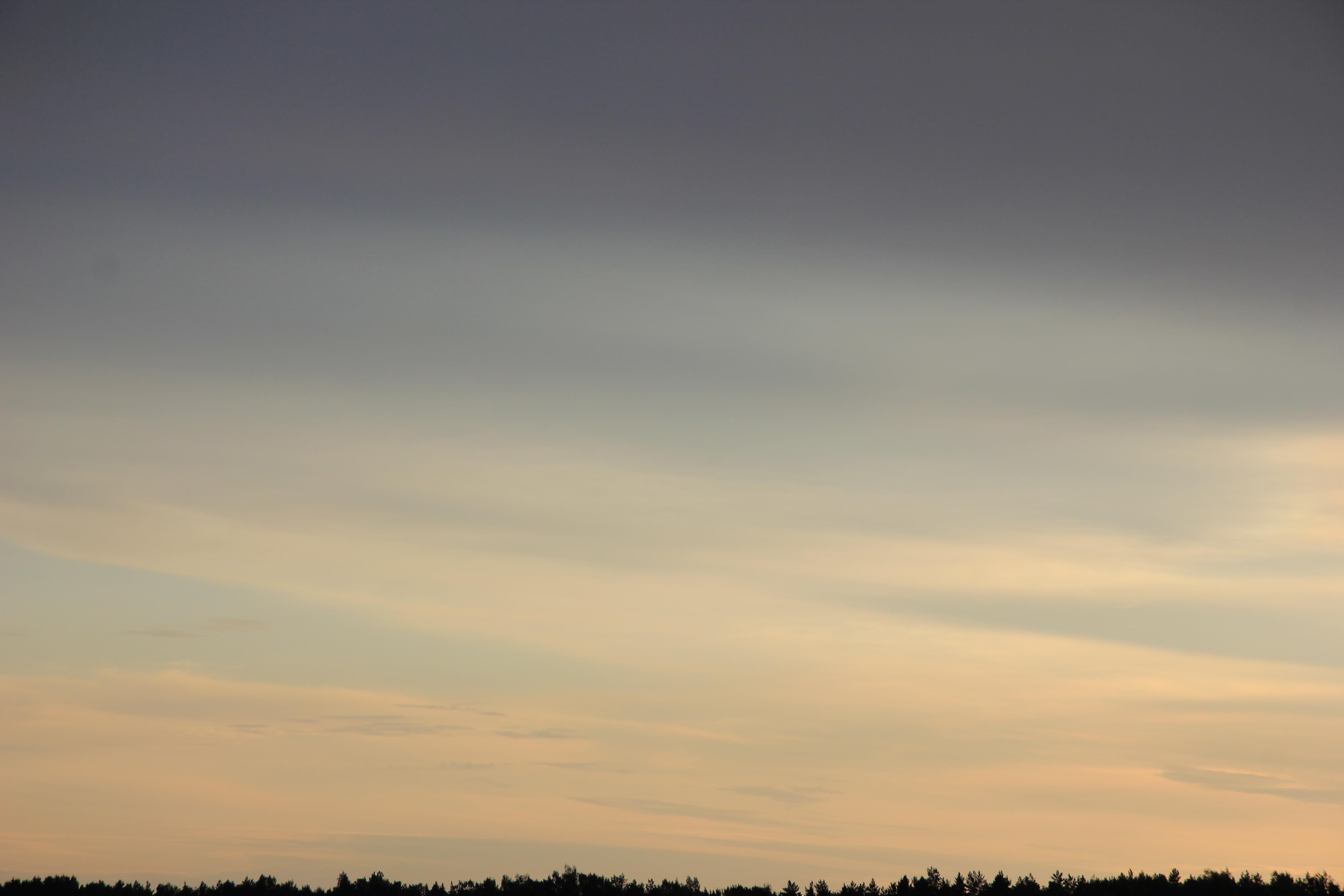 Яркое утреннее небо (92)