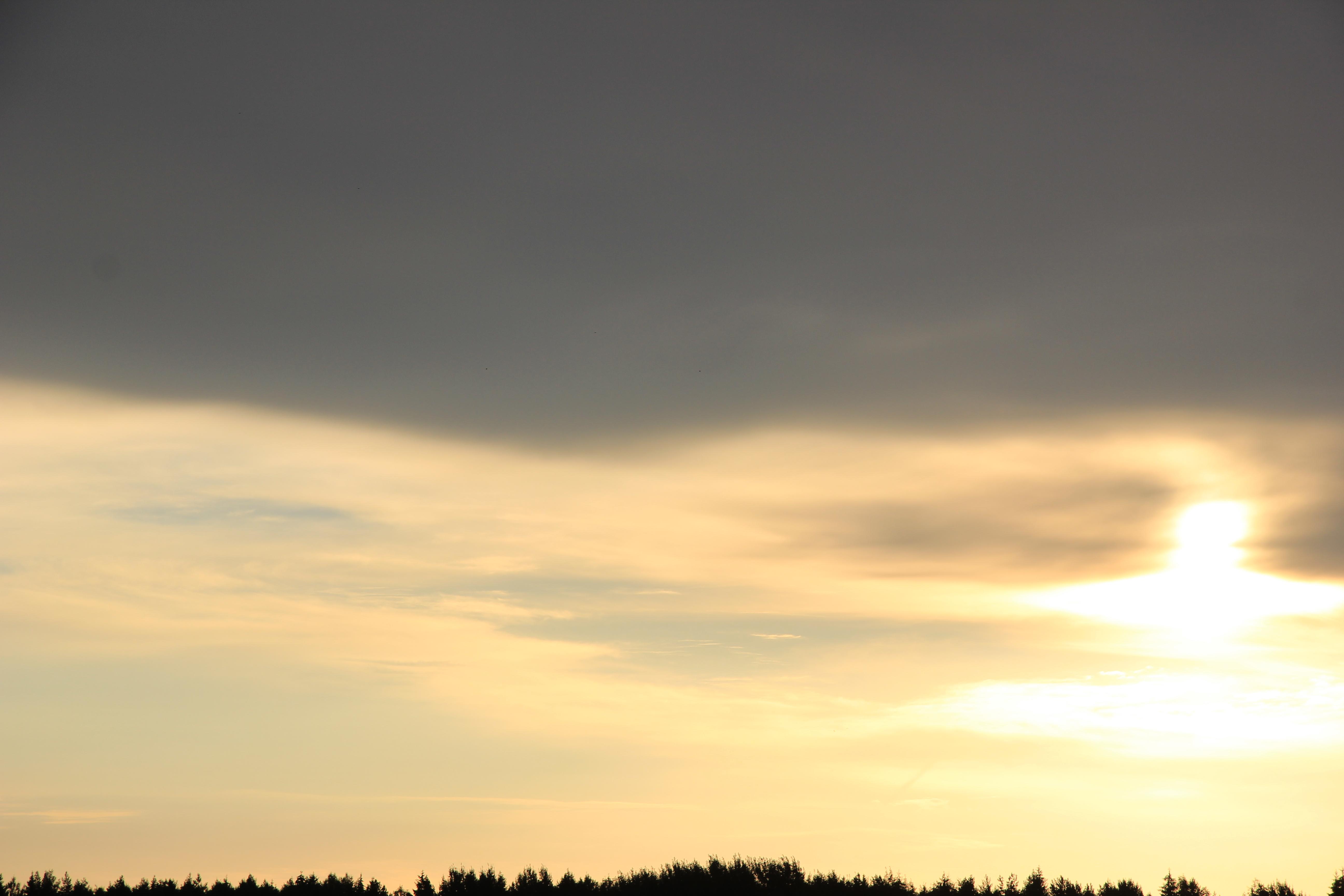 Яркое утреннее небо (99)