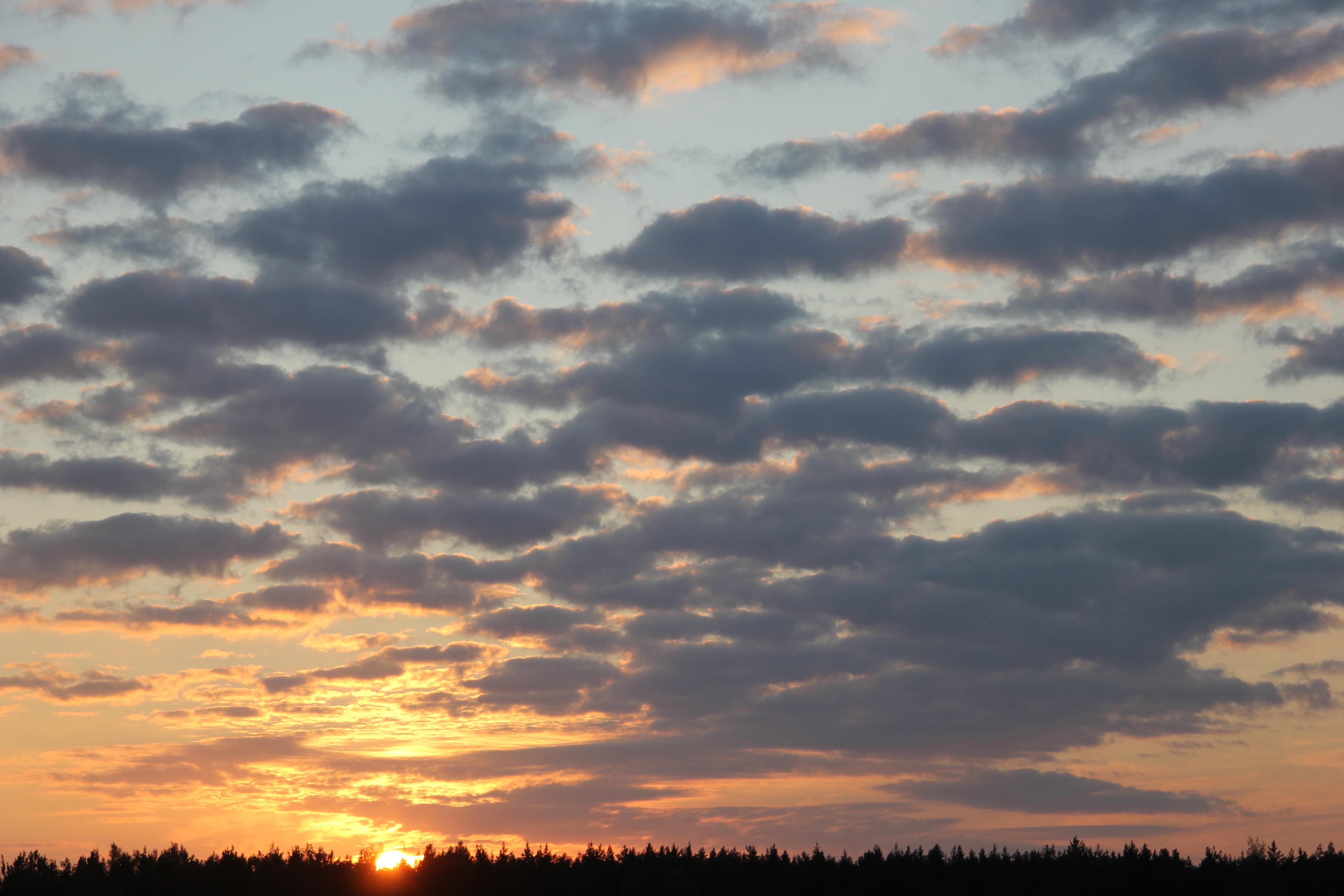 заход солнца (10)