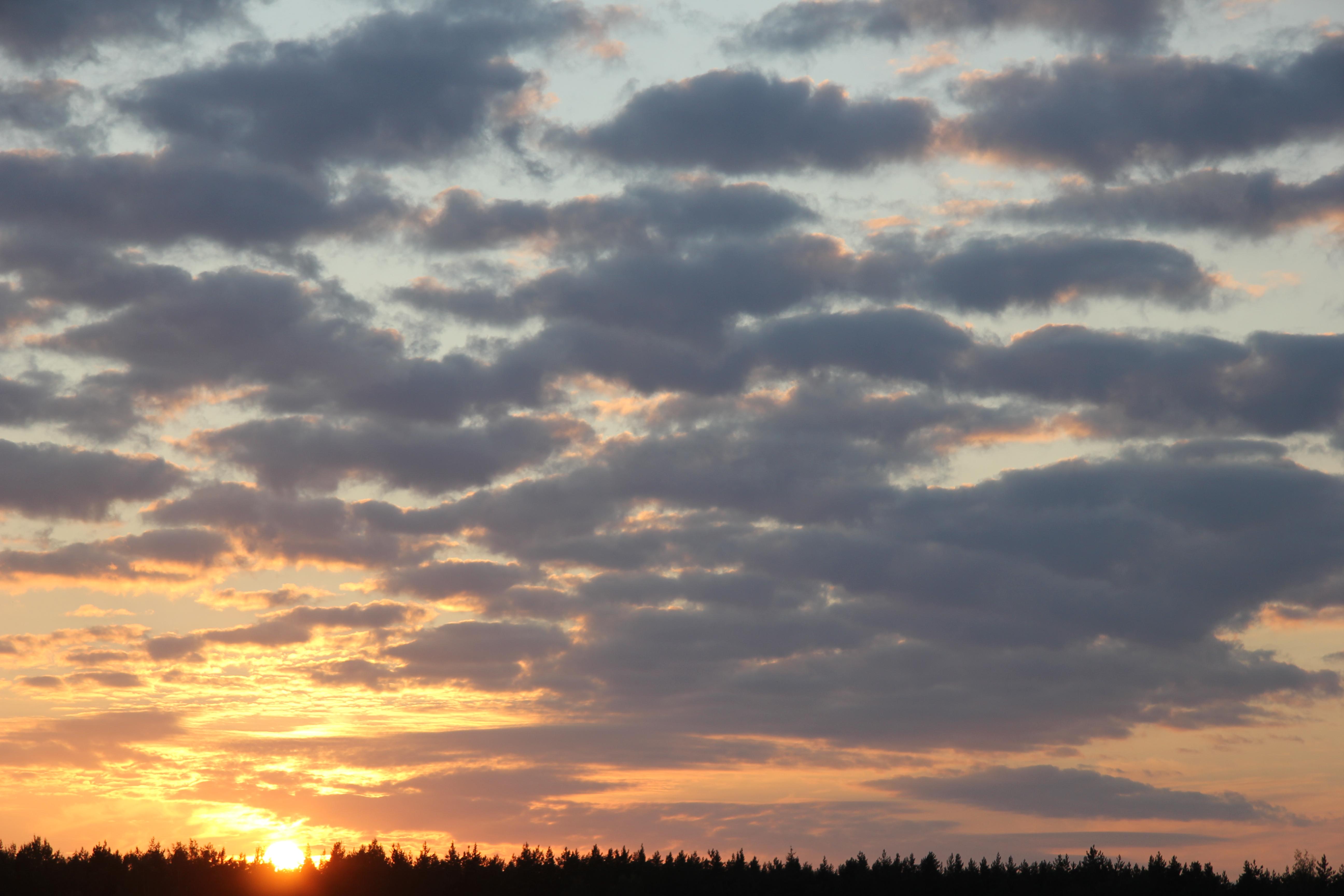 заход солнца (3)