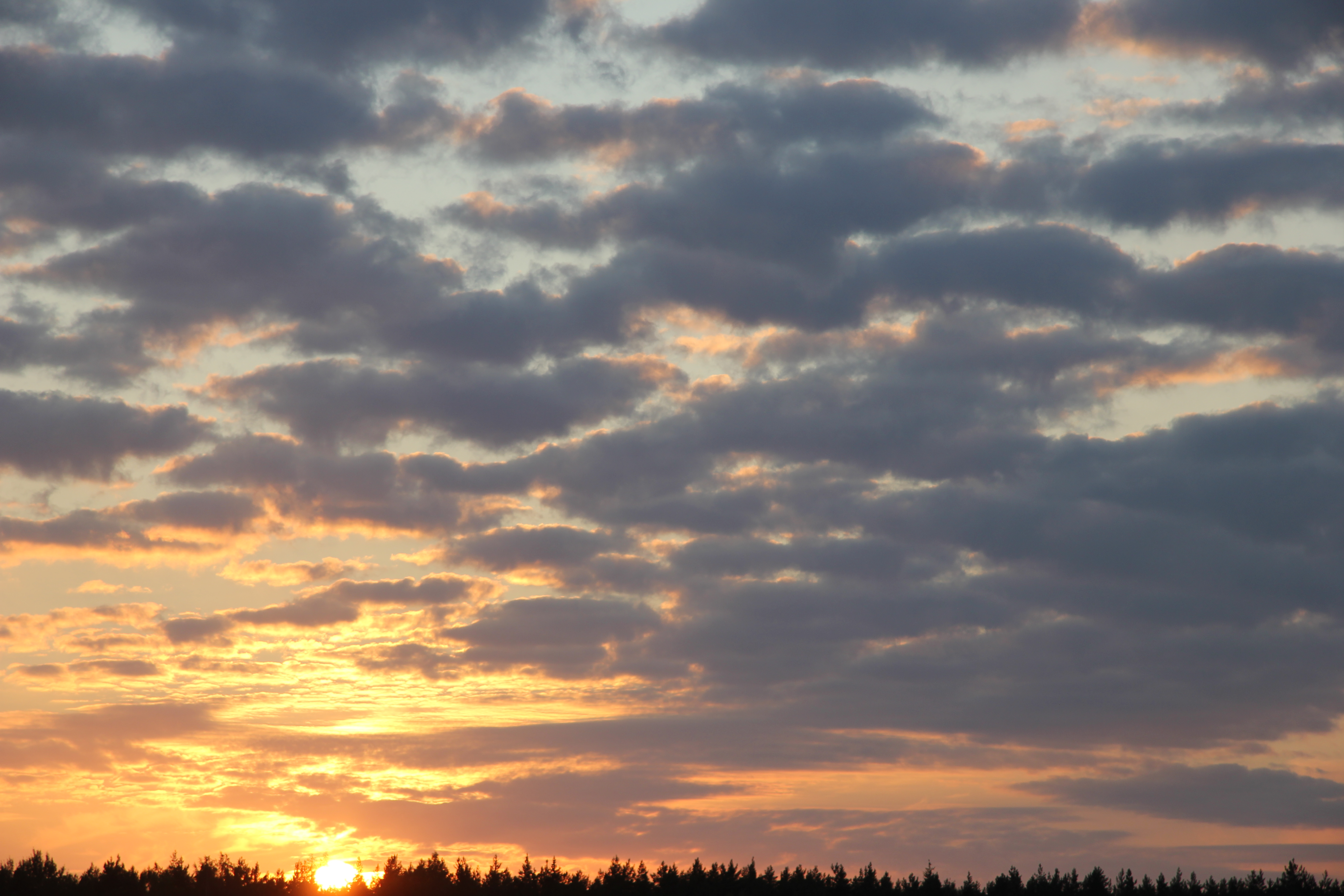 заход солнца (7)
